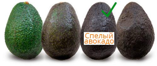 Как выглядит спелый авокадо?