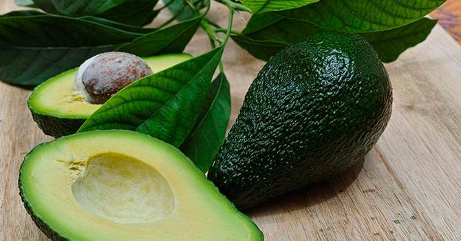 polza-avocado